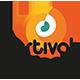 Instituto Festival de Dança de Joinville